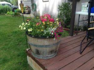 Julie garden